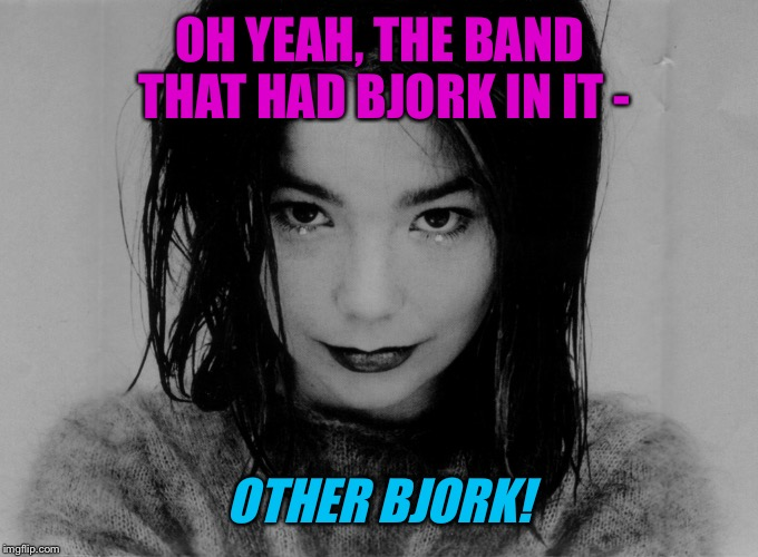 OH YEAH, THE BAND THAT HAD BJORK IN IT - OTHER BJORK! | made w/ Imgflip meme maker