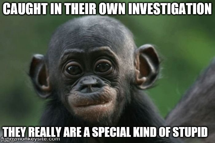 CAUGHT IN THEIR OWN INVESTIGATION THEY REALLY ARE A SPECIAL KIND OF STUPID | made w/ Imgflip meme maker