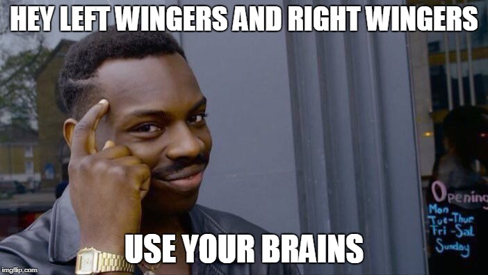 Roll Safe Think About It Meme | HEY LEFT WINGERS AND RIGHT WINGERS USE YOUR BRAINS | image tagged in memes,roll safe think about it,left wing,right wing,left,right | made w/ Imgflip meme maker