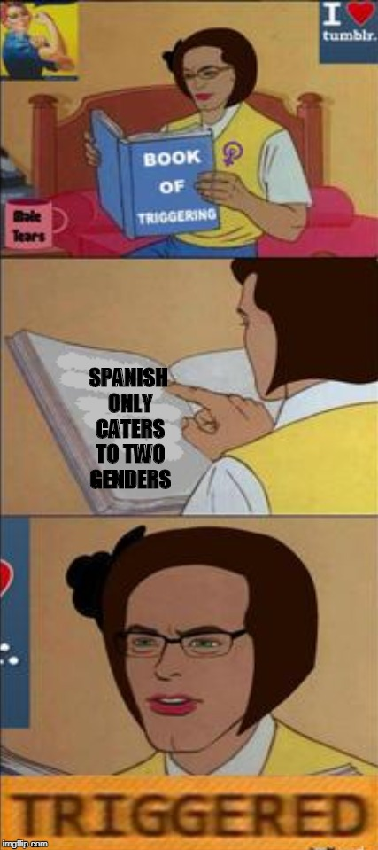 Book that Triggers, Spanish edition.  | SPANISH ONLY CATERS TO TWO GENDERS | image tagged in book that triggers,tumblr,triggered,spanish,genders,memes | made w/ Imgflip meme maker