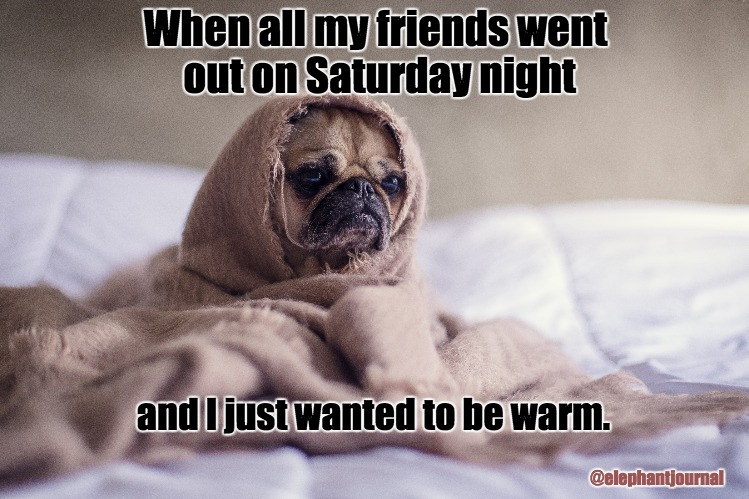 My Saturday Night | When all my friends went out on Saturday night @elephantjournal and I just wanted to be warm. | image tagged in saturday night,homebody,home alone,i love pugs | made w/ Imgflip meme maker