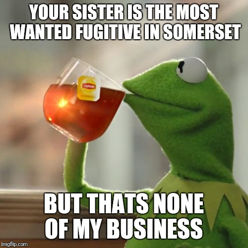 But Thats None Of My Business Meme | YOUR SISTER IS THE MOST WANTED FUGITIVE IN SOMERSET BUT THATS NONE OF MY BUSINESS | image tagged in memes,but thats none of my business,kermit the frog | made w/ Imgflip meme maker