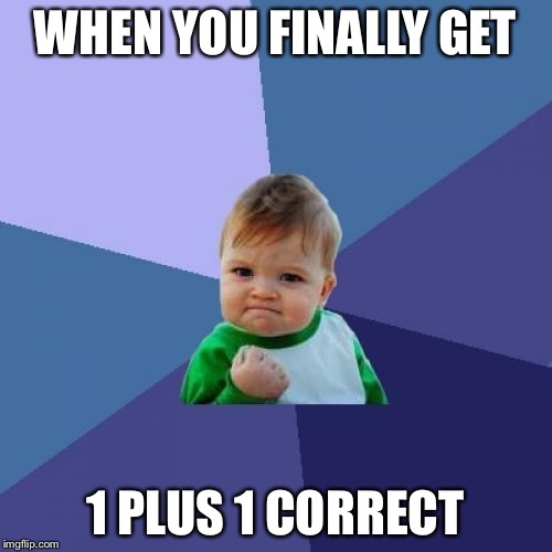 Success Kid Meme | WHEN YOU FINALLY GET 1 PLUS 1 CORRECT | image tagged in memes,success kid | made w/ Imgflip meme maker