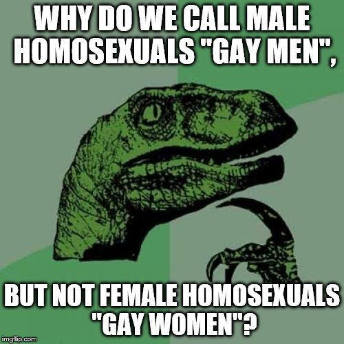 "Philosoraptor Meme | WHY DO WE CALL MALE HOMOSEXUALS ""GAY MEN"", BUT NOT FEMALE HOMOSEXUALS ""GAY WOMEN""? 