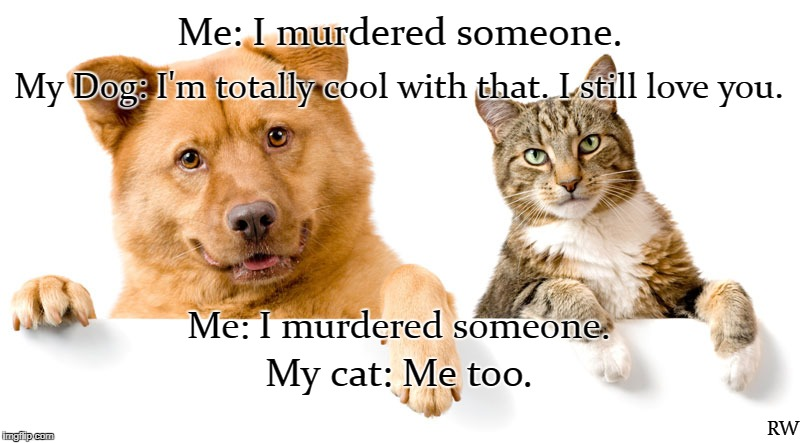 Me: I murdered someone. My Dog: I'm totally cool with that. I still love you. RW Me: I murdered someone. My cat: Me too. | image tagged in murder,cat,dog | made w/ Imgflip meme maker