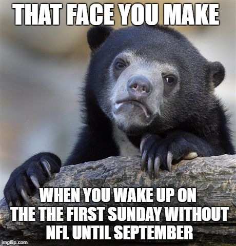 Today NFL fans be like | THAT FACE YOU MAKE WHEN YOU WAKE UP ON THE THE FIRST SUNDAY WITHOUT NFL UNTIL SEPTEMBER | image tagged in memes,confession bear,nfl,nfl memes,football,nfl football | made w/ Imgflip meme maker
