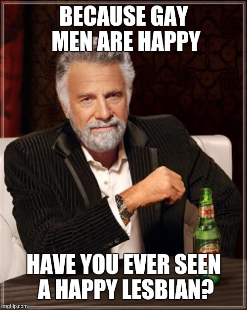 The Most Interesting Man In The World Meme | BECAUSE GAY MEN ARE HAPPY HAVE YOU EVER SEEN A HAPPY LESBIAN? | image tagged in memes,the most interesting man in the world | made w/ Imgflip meme maker
