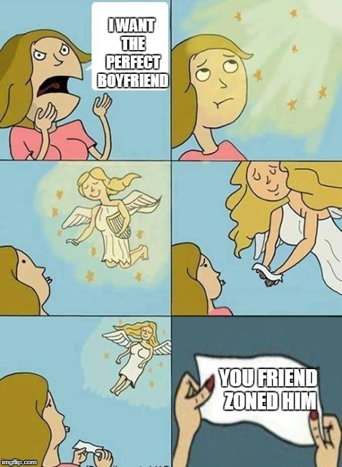 sad really |  I WANT THE PERFECT BOYFRIEND; YOU FRIEND ZONED HIM | image tagged in we don't care,ssby,sad,or is it,funny | made w/ Imgflip meme maker