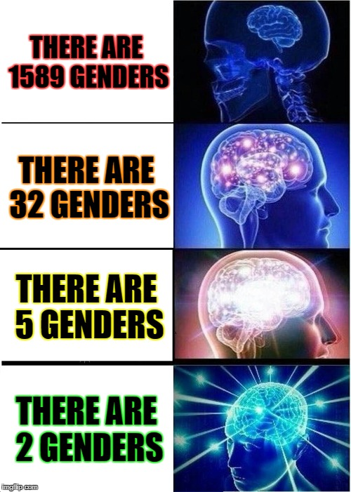 Expanding Brain Meme | THERE ARE 1589 GENDERS THERE ARE 32 GENDERS THERE ARE 5 GENDERS THERE ARE 2 GENDERS | image tagged in memes,expanding brain | made w/ Imgflip meme maker