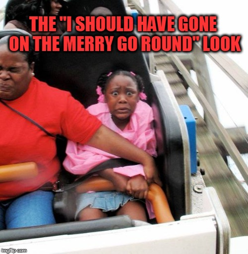 "Roller Coasters r scary | THE ""I SHOULD HAVE GONE ON THE MERRY GO ROUND"" LOOK 