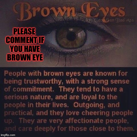 Please comment if you have brown eye's (Dancer_12 told me to do it and it'll make it easyer for imgflip the series.) | PLEASE COMMENT IF YOU HAVE BROWN EYE | image tagged in memes,meme,quotes,quote | made w/ Imgflip meme maker