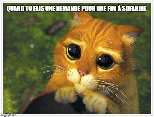 [JEU] Vos memes sympa des serveurs, TS et Forum de CTG ! - Page 3 24d4a6