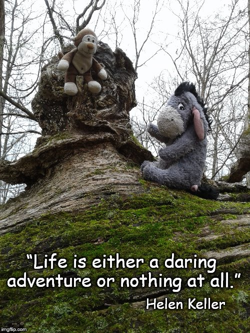 "Adventure | ""Life is either a daring adventure or nothing at all."" Helen Keller 