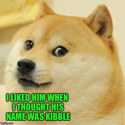 Doge Meme | I LIKED HIM WHEN I THOUGHT HIS NAME WAS KIBBLE | image tagged in memes,doge | made w/ Imgflip meme maker