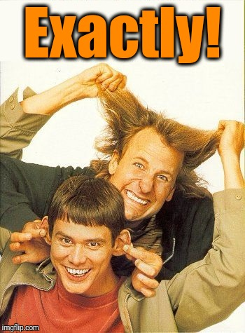 DUMB and dumber | Exactly! | image tagged in dumb and dumber | made w/ Imgflip meme maker