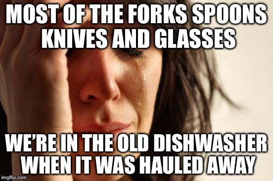 True Story | MOST OF THE FORKS SPOONS KNIVES AND GLASSES WE'RE IN THE OLD DISHWASHER WHEN IT WAS HAULED AWAY | image tagged in memes,first world problems,true story | made w/ Imgflip meme maker