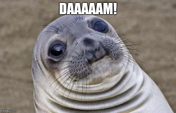 Awkward Moment Sealion Meme | DAAAAAM! | image tagged in memes,awkward moment sealion | made w/ Imgflip meme maker