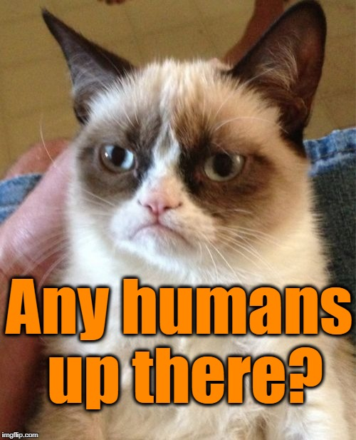 Grumpy Cat Meme | Any humans up there? | image tagged in memes,grumpy cat | made w/ Imgflip meme maker