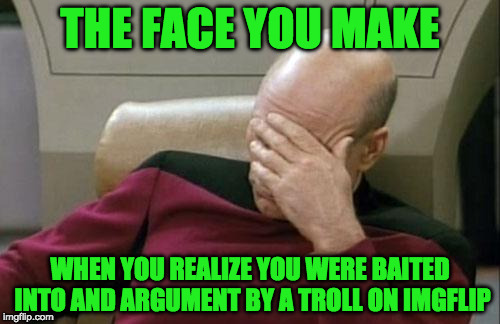 Arguing online is like competing in the special olympics | THE FACE YOU MAKE WHEN YOU REALIZE YOU WERE BAITED INTO AND ARGUMENT BY A TROLL ON IMGFLIP | image tagged in memes,captain picard facepalm | made w/ Imgflip meme maker