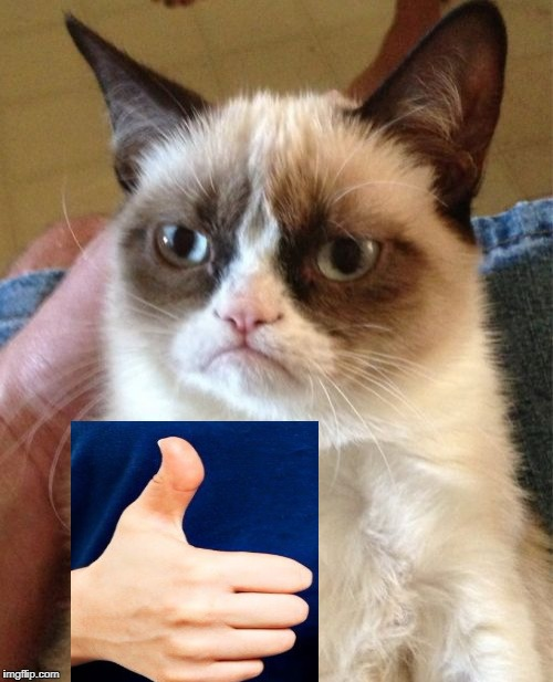 Grumpy Cat Meme | image tagged in memes,grumpy cat | made w/ Imgflip meme maker
