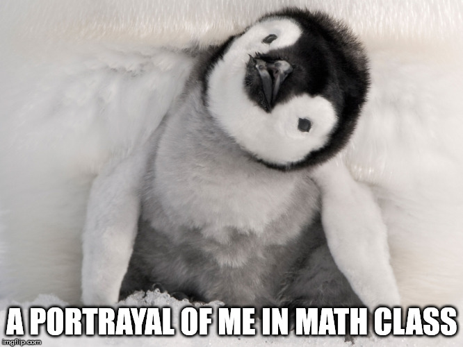 A PORTRAYAL OF ME IN MATH CLASS | image tagged in confusion | made w/ Imgflip meme maker