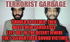 TERRORIST GARBAGE SHOULD BE GELDED, THEN HAVE THEIR CARCASSES LEFT OUT IN THE DESERT WHERE THEY SLAUGHTERED BOUND VICTIMS. | image tagged in terrorist garbage | made w/ Imgflip meme maker