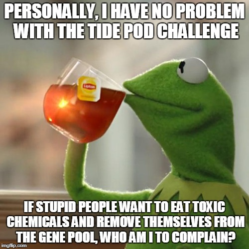 Natural Selection | PERSONALLY, I HAVE NO PROBLEM WITH THE TIDE POD CHALLENGE IF STUPID PEOPLE WANT TO EAT TOXIC CHEMICALS AND REMOVE THEMSELVES FROM THE GENE P | image tagged in memes,but thats none of my business,kermit the frog,tide pod,natural selection | made w/ Imgflip meme maker