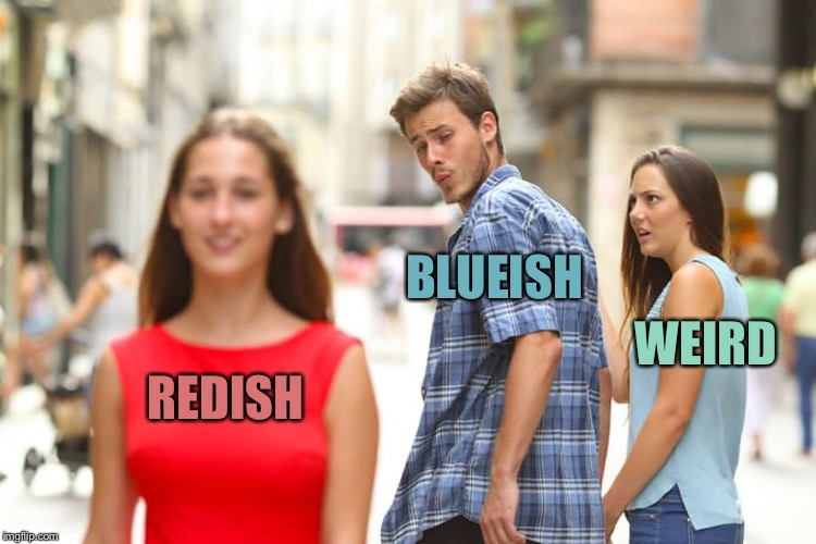 Distracted Boyfriend Meme | REDISH BLUEISH WEIRD | image tagged in memes,distracted boyfriend | made w/ Imgflip meme maker