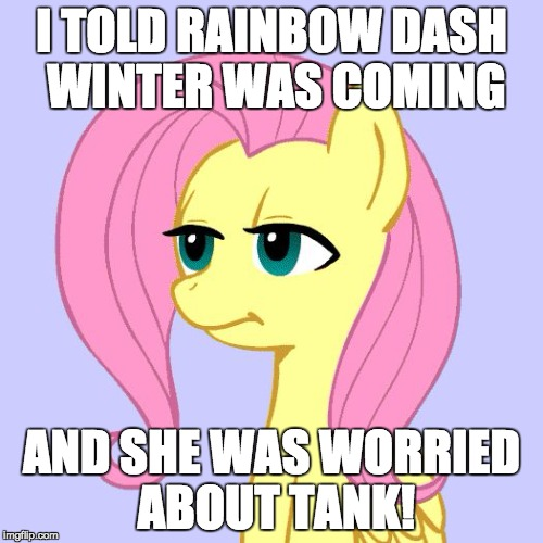 Would fluttershy care? | I TOLD RAINBOW DASH WINTER WAS COMING AND SHE WAS WORRIED ABOUT TANK! | image tagged in tired of your crap,memes,winter,fluttershy,rainbow dash | made w/ Imgflip meme maker