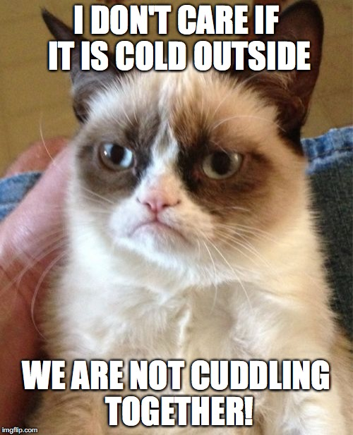 Grumpy Cat wants no cuddle! | I DON'T CARE IF IT IS COLD OUTSIDE WE ARE NOT CUDDLING TOGETHER! | image tagged in memes,grumpy cat,cuddle,cold weather | made w/ Imgflip meme maker