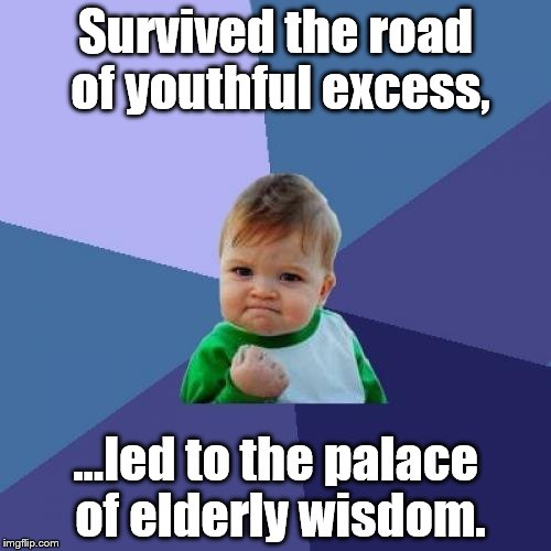 Success Kid Meme | Survived the road of youthful excess, ...led to the palace of elderly wisdom. | image tagged in memes,success kid | made w/ Imgflip meme maker