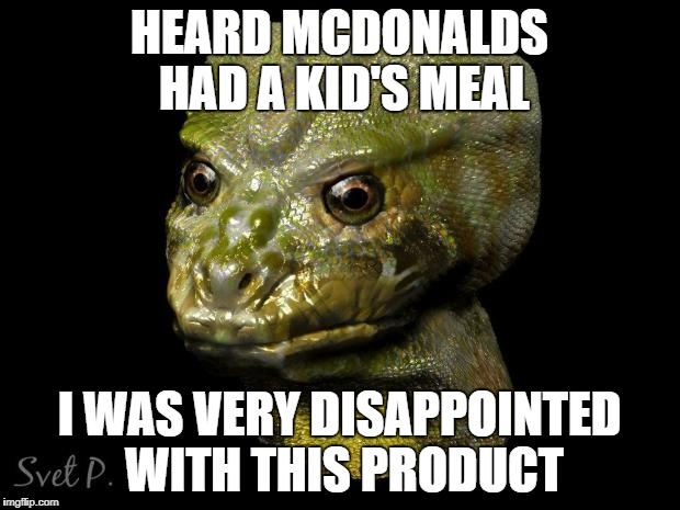 Reptilian Shapeshifter goes to McDonalds | HEARD MCDONALDS HAD A KID'S MEAL I WAS VERY DISAPPOINTED WITH THIS PRODUCT | image tagged in reptilian shapeshifter guy,conspiracy,conspiracy theory,conspiracy theories,reptilians | made w/ Imgflip meme maker