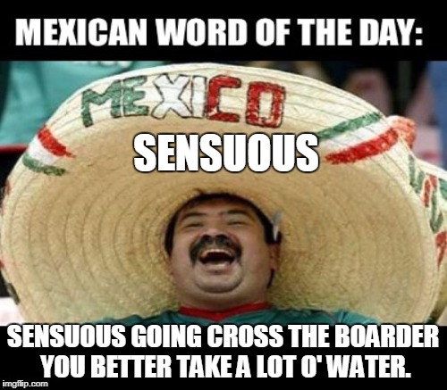 To avoid dehydration... | SENSUOUS SENSUOUS GOING CROSS THE BOARDER YOU BETTER TAKE A LOT O' WATER. | image tagged in memes,mexican word of the day,border,crossing,illegals,immigrants | made w/ Imgflip meme maker