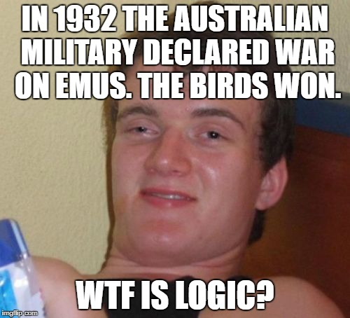10 Guy Meme | IN 1932 THE AUSTRALIAN MILITARY DECLARED WAR ON EMUS. THE BIRDS WON. WTF IS LOGIC? | image tagged in memes,10 guy | made w/ Imgflip meme maker