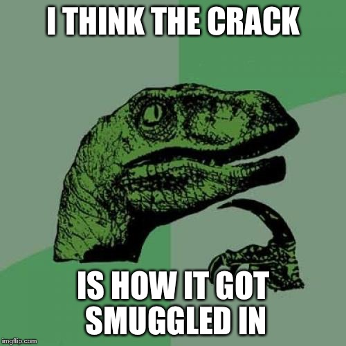 Philosoraptor Meme | I THINK THE CRACK IS HOW IT GOT SMUGGLED IN | image tagged in memes,philosoraptor | made w/ Imgflip meme maker