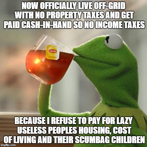 But Thats None Of My Business | NOW OFFICIALLY LIVE OFF-GRID WITH NO PROPERTY TAXES AND GET PAID CASH-IN-HAND SO NO INCOME TAXES BECAUSE I REFUSE TO PAY FOR LAZY USELESS PE | image tagged in memes,but thats none of my business,kermit the frog | made w/ Imgflip meme maker