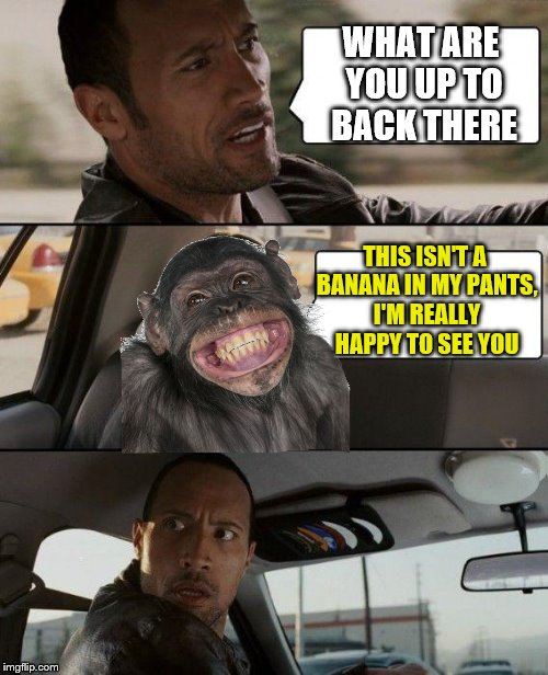 The Rock Driving Meme | WHAT ARE YOU UP TO BACK THERE THIS ISN'T A BANANA IN MY PANTS, I'M REALLY HAPPY TO SEE YOU | image tagged in memes,the rock driving | made w/ Imgflip meme maker