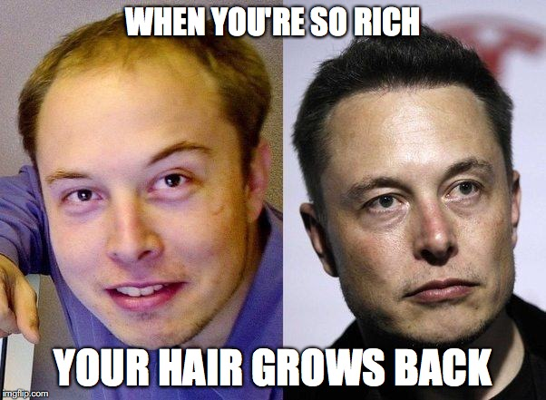 WHEN YOU'RE SO RICH YOUR HAIR GROWS BACK | image tagged in elon musk,hair | made w/ Imgflip meme maker