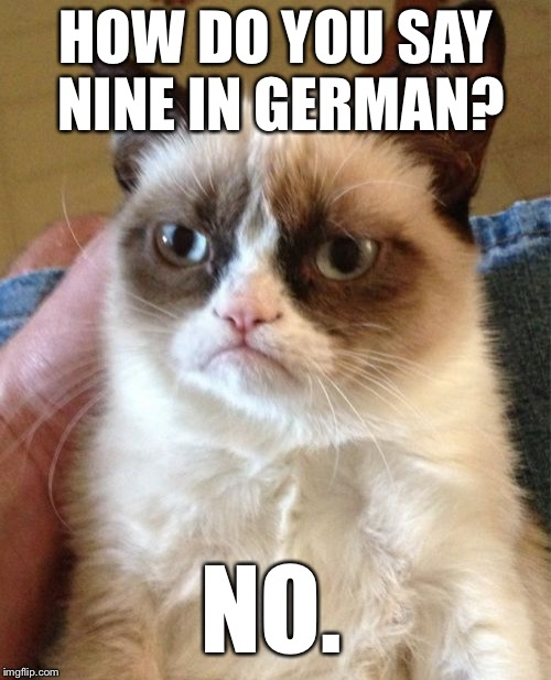Grumpy Cat Meme | HOW DO YOU SAY NINE IN GERMAN? NO. | image tagged in memes,grumpy cat | made w/ Imgflip meme maker