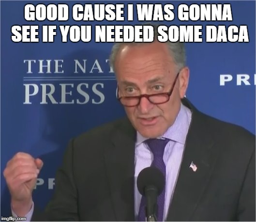 mean spirited | GOOD CAUSE I WAS GONNA SEE IF YOU NEEDED SOME DACA | image tagged in mean spirited | made w/ Imgflip meme maker