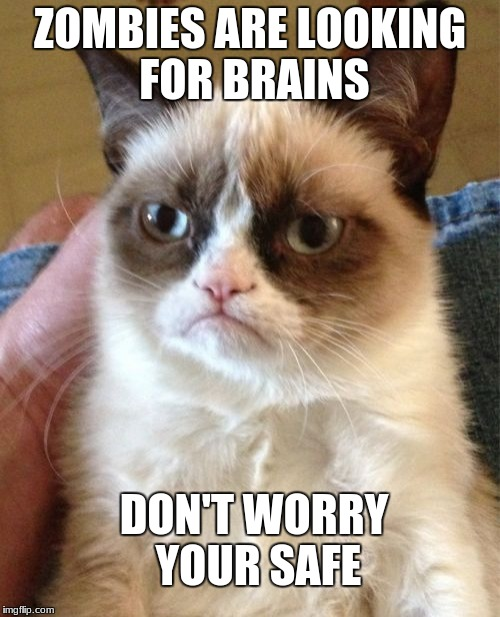 Grumpy Cat Meme | ZOMBIES ARE LOOKING FOR BRAINS DON'T WORRY YOUR SAFE | image tagged in memes,grumpy cat | made w/ Imgflip meme maker
