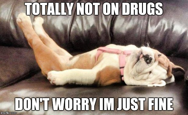 Don't worry I'm just fine | TOTALLY NOT ON DRUGS DON'T WORRY IM JUST FINE | image tagged in drunk baby | made w/ Imgflip meme maker