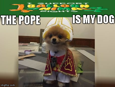 Costume | THE POPE IS MY DOG | image tagged in memes,dogs,costume | made w/ Imgflip meme maker