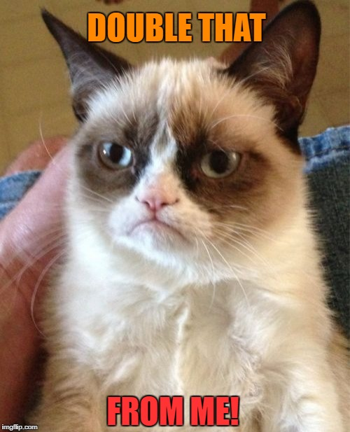 Grumpy Cat Meme | DOUBLE THAT FROM ME! | image tagged in memes,grumpy cat | made w/ Imgflip meme maker
