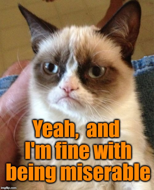 Grumpy Cat Meme | Yeah,  and I'm fine with being miserable | image tagged in memes,grumpy cat | made w/ Imgflip meme maker