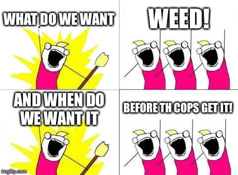 What Do We Want Meme | WHAT DO WE WANT WEED! AND WHEN DO WE WANT IT BEFORE TH COPS GET IT! | image tagged in memes,what do we want | made w/ Imgflip meme maker
