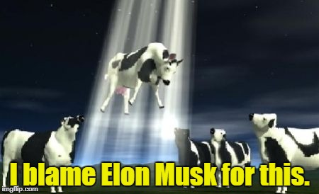 I blame Elon Musk for this. | made w/ Imgflip meme maker