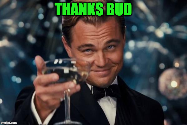 Leonardo Dicaprio Cheers Meme | THANKS BUD | image tagged in memes,leonardo dicaprio cheers | made w/ Imgflip meme maker