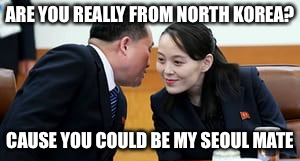 ARE YOU REALLY FROM NORTH KOREA? CAUSE YOU COULD BE MY SEOUL MATE | made w/ Imgflip meme maker
