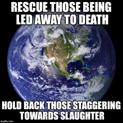 Earth of the day 2/11/18 | RESCUE THOSE BEING LED AWAY TO DEATH HOLD BACK THOSE STAGGERING TOWARDS SLAUGHTER | image tagged in earth,meme,joke | made w/ Imgflip meme maker